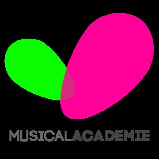 lidgeld musicalAcademie